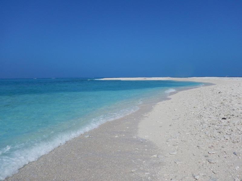 慶良間無人島・珊瑚の島