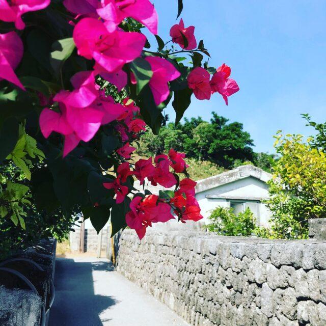慶良間諸島の景色